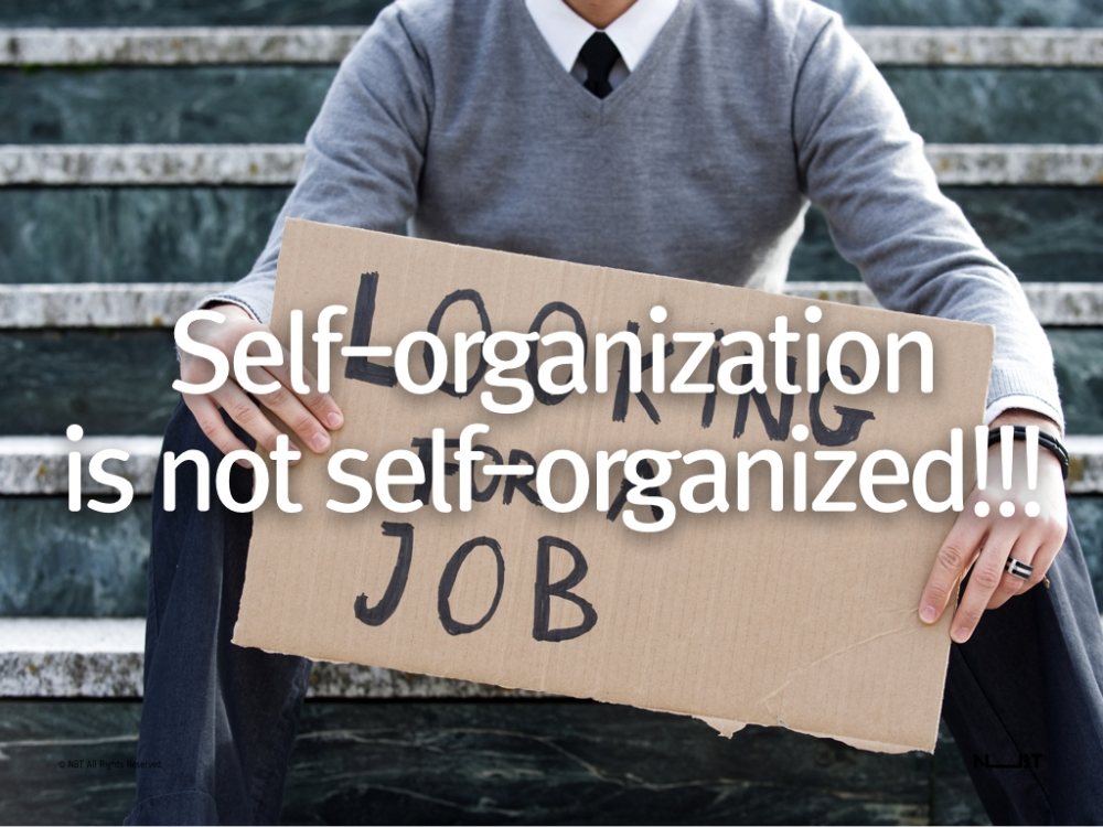Self-organization is not self-organized.010